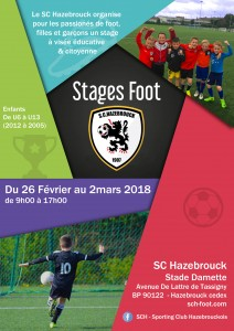 affiche stage hiver